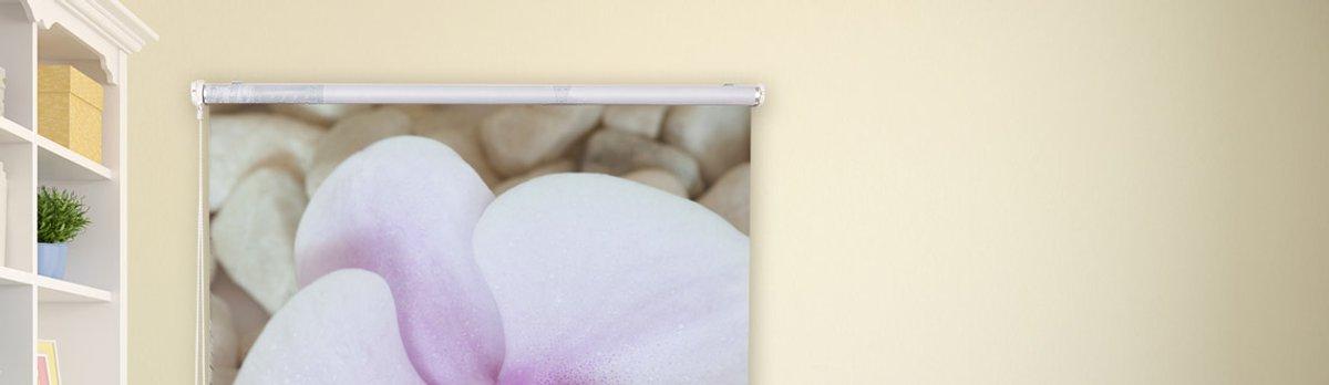 Bedrucktes Rollo mit Motiv Orchidee vor dem Fenster eines Zimmers