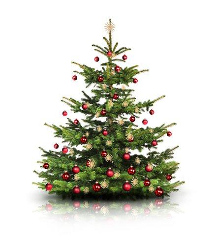 Foto-Leinwand ohne Rahmen - Weihnachtsbaum (von by-studio)
