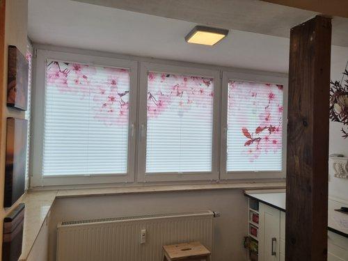 Foto-Plissees Kirschblüten für die Küche